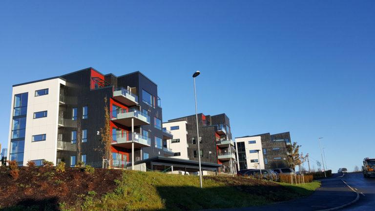 Foto av Solstrandvegen