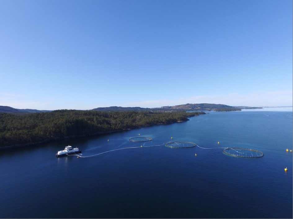 Båter på fjorden i Langøy/Ospeneset